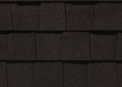 Black Walnut Shingle